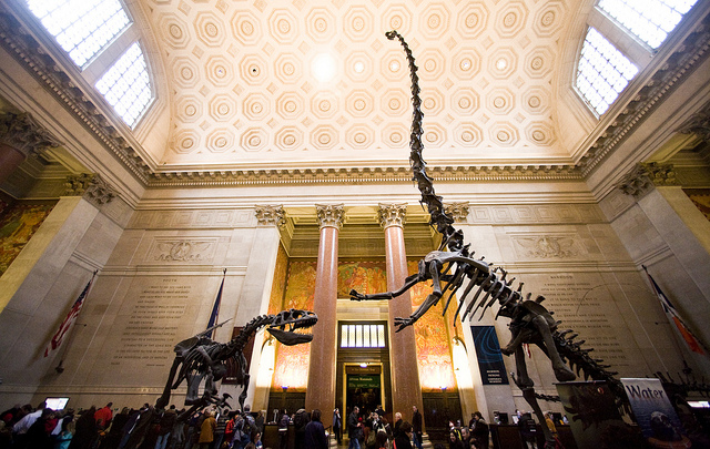 Museo di Storia Naturale [Foto di Thomas Hawk]