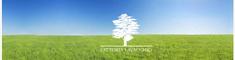 fattoria_lavacchio