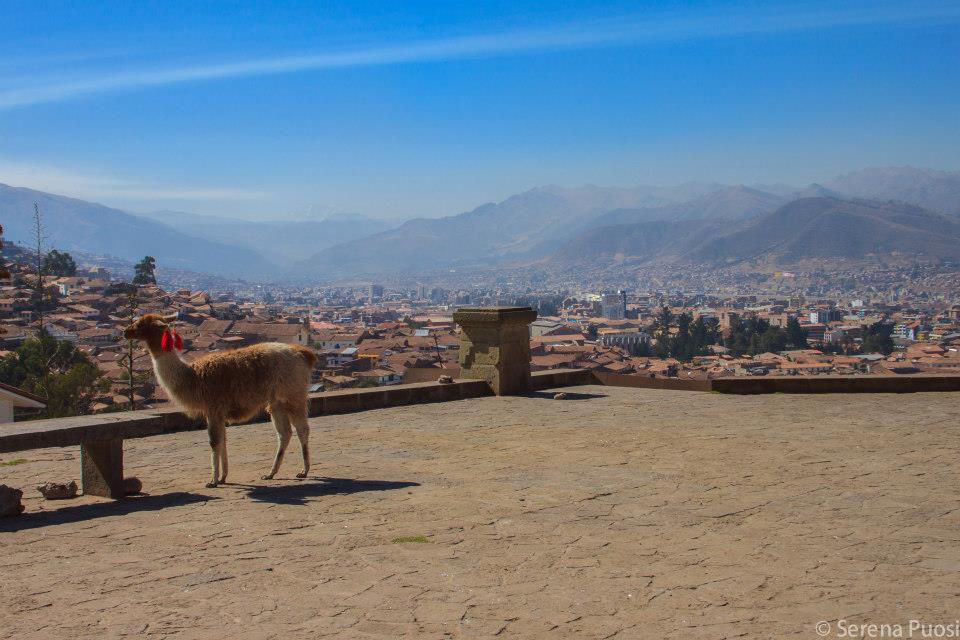Cusco vista dall'alto