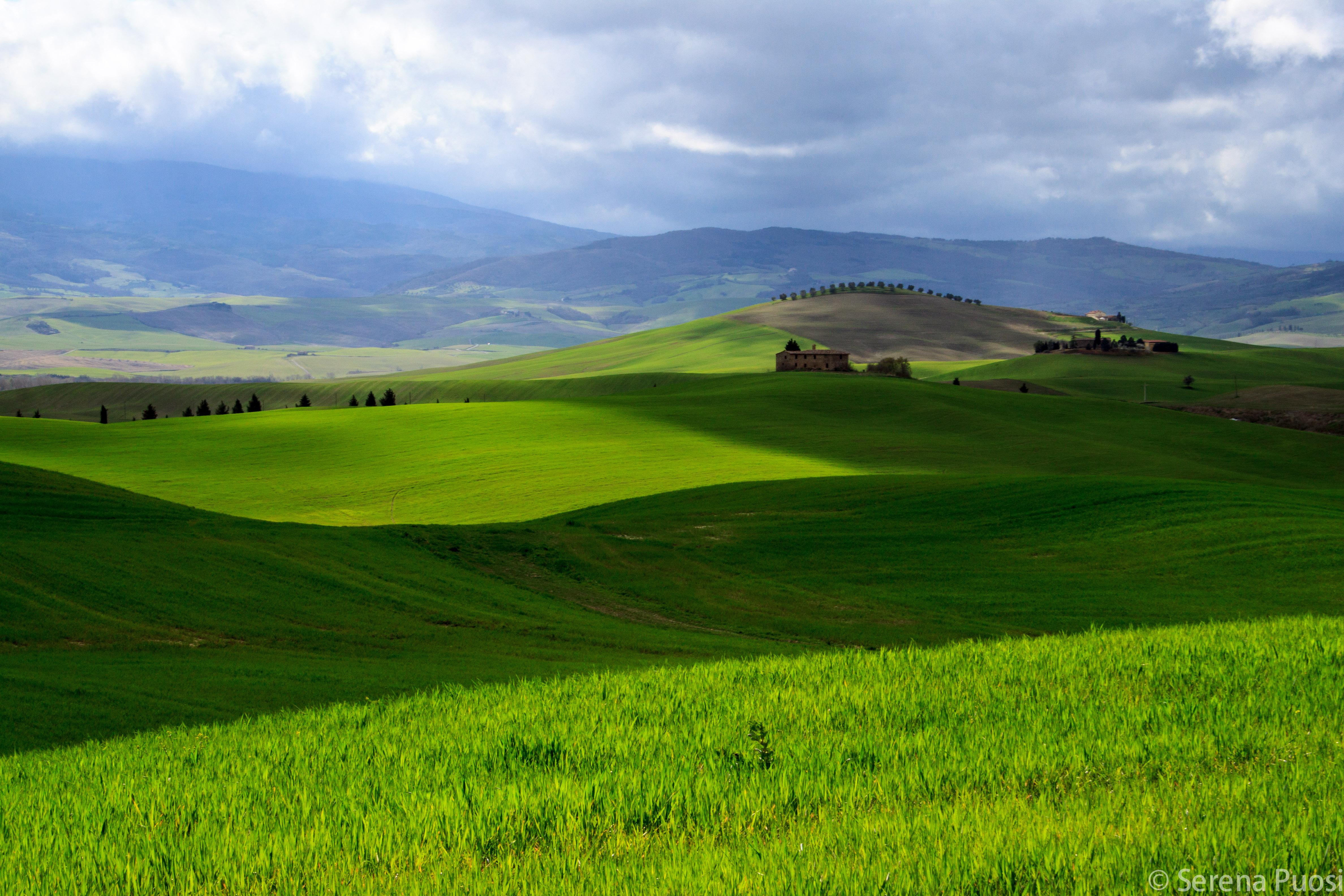 Verde Val d'Orcia