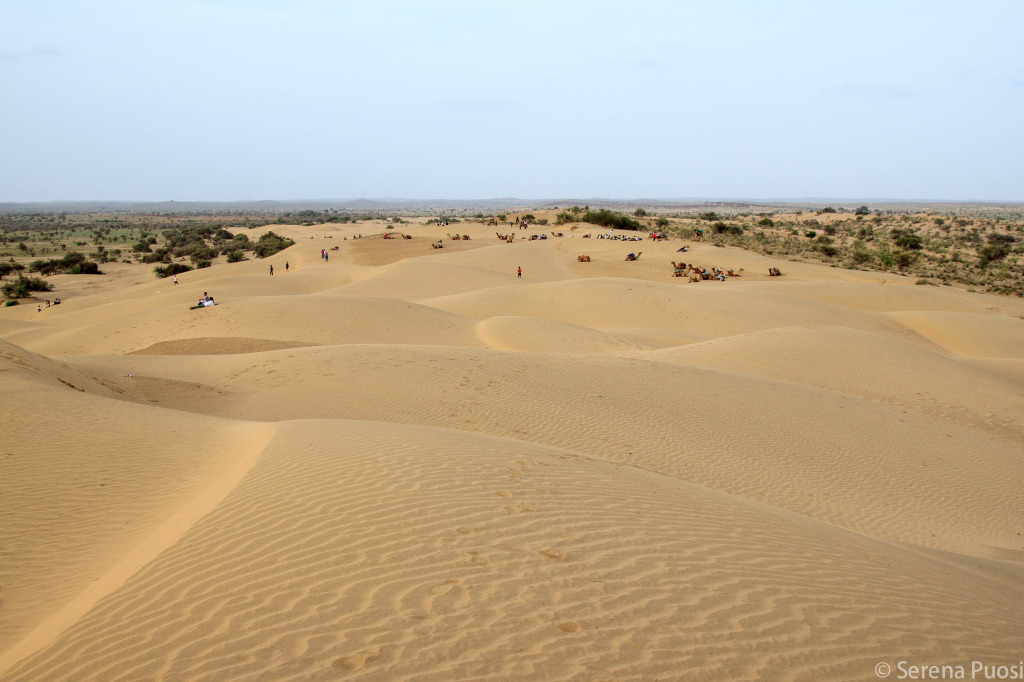 deserto-thar