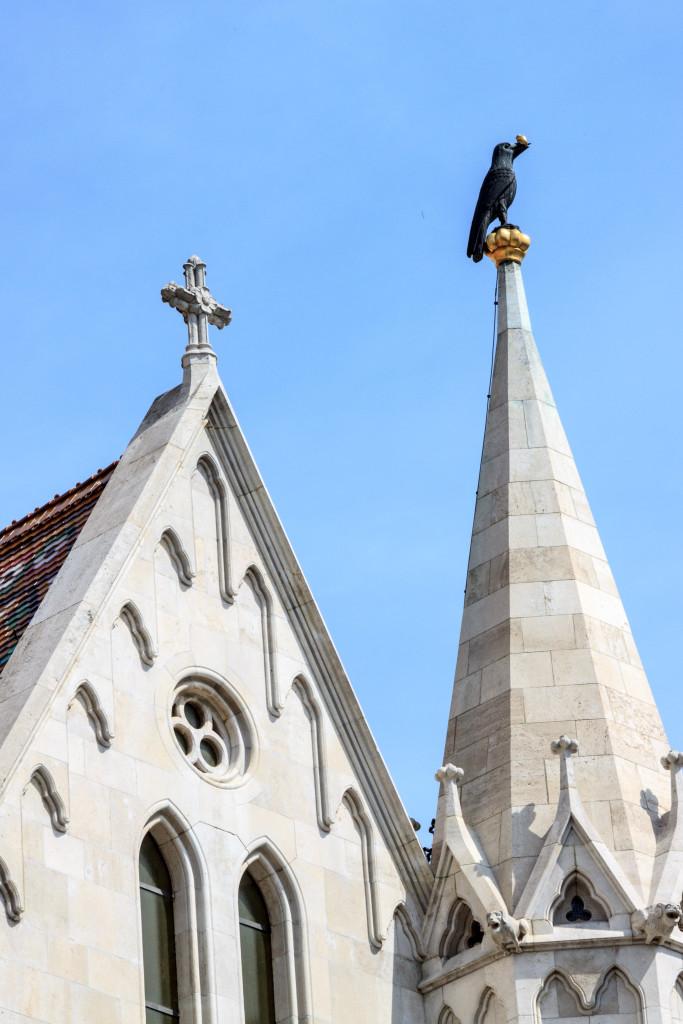 Corvo nero sulla Chiesa di Mattia