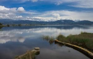 Versilia-Torre-del-Lago