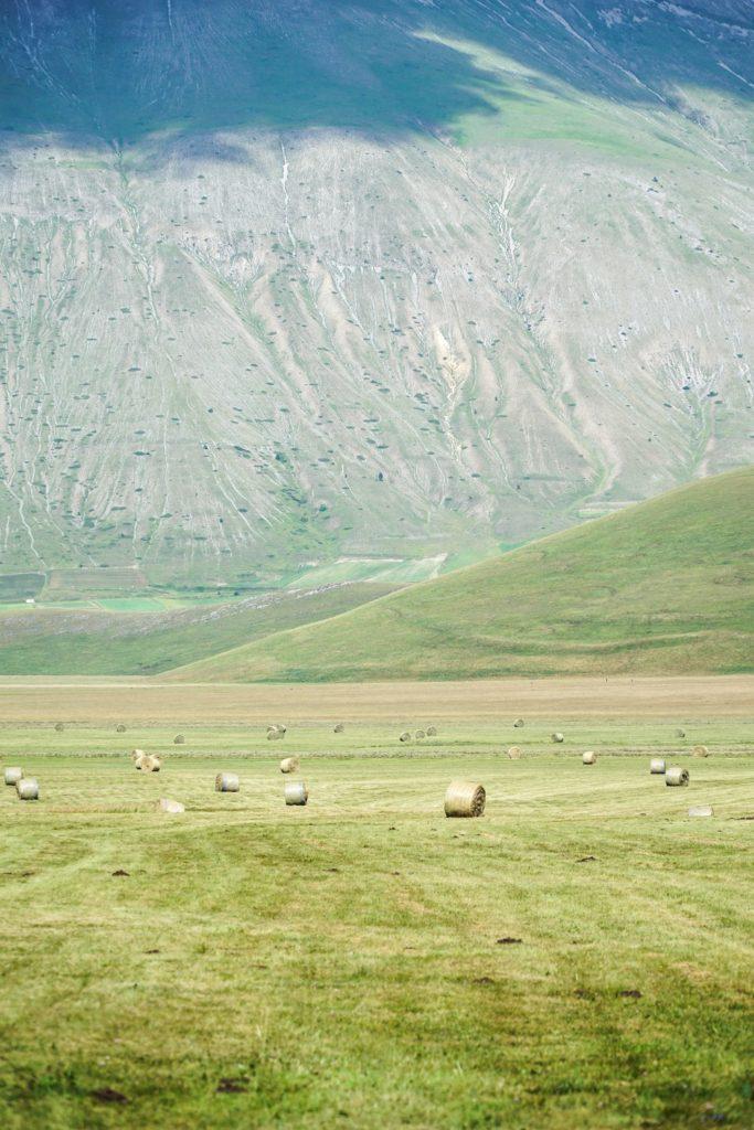 Castelluccio-di-Norcia-rotoballe